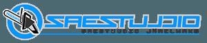 Saestuudio Järelmaksu logo